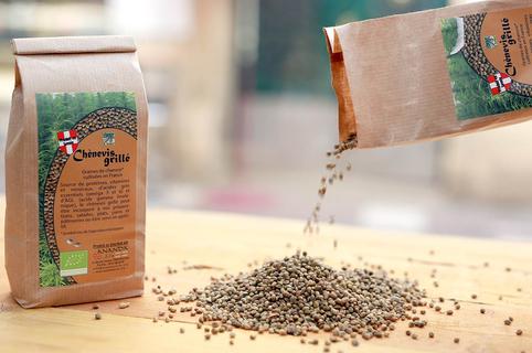 Histoire de Graines Montpellier est une boutique de graines potagères, médicinales, aromatiques, de graines de collection, de produits à base de CBD à découvrir en centre-ville. Ici graines de chénevis (® SAAM-Fabrice Chort)