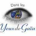 Dans les Yeux de Gaïa Montpellier propose de nombreuses idées cadeaux autour de l'ésotérisme, des bijoux et du bien être