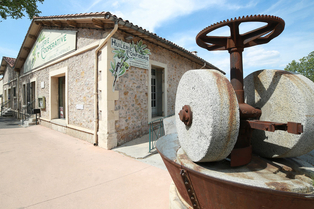 Huilerie Clermont l'Hérault Coopérative OlidOc vend des olives, des huiles d'olives et des produits régionaux (®  networld-Fabrice Chort)