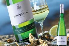 Les Costières de Pomérols proposent de nombreux vins blancs à découvrir au caveau (® costières de Pomérols)