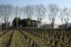 Paysage d'automne hiver sur le terroir de la Gravette de Corconne (credits photos: Gravette)