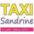 Logo de l'artisan taxi Taxi Sandrine sur la commune de Lunel