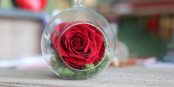 Fleurs pour la Saint Valentin à Montpellier avec Aimer les sens des Fleurs (® SAAM-fabrice Chort)