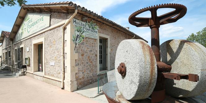 OlidOc Clermont l'Hérault de l'Huilerie coopérative présente ses nouvelles huiles d'olive des récoltes 2018-2019.(® SAAM-fabrice Chort)