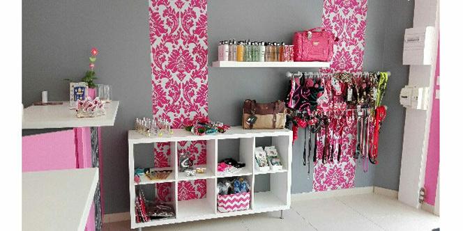 Pomponnette toilettage second salon grau du roi montpellier shopping - Ouvrir un salon de toilettage ...