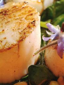 Recette Fleur de bourache et Noix de St Jacques du restaurant Tamarillos , chef Philiipe Chapon, quartier Prefecture