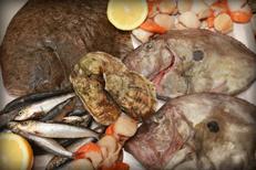 Restaurant de poissons Montpellier centre-ville chez La Morue Montpellier avec la pêche du jour et les poissons frais  (® NetWorld-Fabrice Chort)